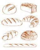 在收集向量上添面包 库存照片