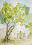 在教会前面的幽静树 库存照片