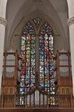 在教会圣徒Walburga的污迹玻璃窗 免版税图库摄影