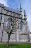 在教会旁边的不生叶的树 图库摄影