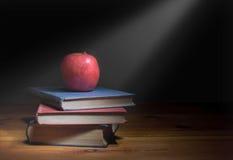 在教育的聚光灯 免版税库存照片
