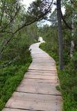 在教育足迹Chalupska板条的木人行桥 库存照片