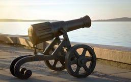 在散步的老大炮 免版税库存图片
