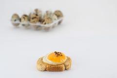 在敬酒的面包的鹌鹑蛋 免版税图库摄影