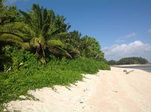 在斐济的热带海岛上的一个沙滩在南太平洋 免版税图库摄影