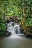 在斗湖小山公园的瀑布 免版税库存照片