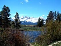 在斯坦利,爱达荷2附近的萨蒙河 库存图片