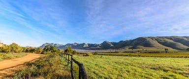 在斯坦福附近的农场 免版税库存图片