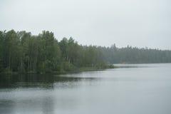 在斯堪的纳维亚湖的有薄雾的早晨有雨的在水起波纹 免版税库存照片