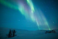 在斯堪的那维亚的极光borealis 库存图片