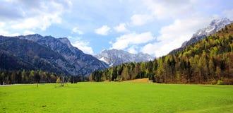 在斯洛文尼亚阿尔卑斯之上的蓝色和多云天空 库存照片