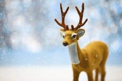 在斯诺伊背景的逗人喜爱的驯鹿 免版税库存照片