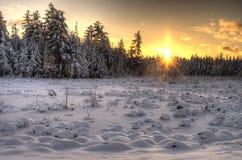 在斯诺伊领域的日落 图库摄影