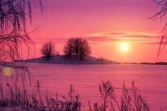 在斯诺伊领域的日落 免版税图库摄影