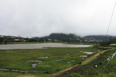 在斯里兰卡上的雾 库存照片