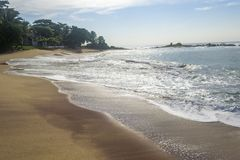 在斯里兰卡南部的金黄海滩 库存照片