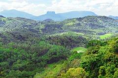 在斯里兰卡的海岛上的山 库存图片