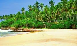 在斯里兰卡的海滩 免版税库存图片