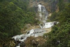 在斯里兰卡的瀑布 库存图片