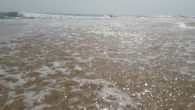 在斯里兰卡Arugambay海滩的晴朗的海滩 免版税库存图片
