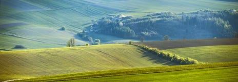在斯洛伐克的小山的4月 免版税图库摄影