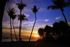 在新加坡日落的海滩 库存照片