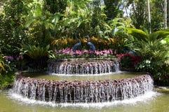 在新加坡` s兰花庭院入口的喷泉  库存照片