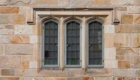 在新哥特式的树窗口 图库摄影