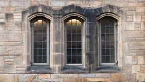在新哥特式的树窗口 免版税图库摄影
