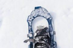在新展示的雪靴 库存照片