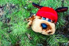 在新年针的分支的长毛绒狗 免版税库存照片