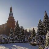 在新年` s假日期间,快乐装饰的雪加盖的圣诞树是在Manegnaya广场的立场 免版税库存图片