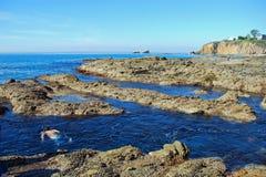 在新月形海湾,拉古纳海滩,加利福尼亚附近的Snorkling 库存照片