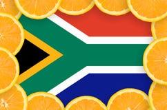 在新柑桔切片框架的南非旗子 库存例证