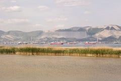 在新罗西斯克海湾的红色和蓝色货船  免版税库存图片