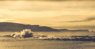 在新西兰海岸的大波浪 库存图片