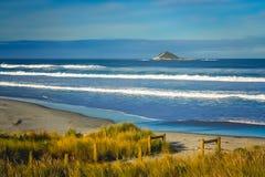 在新西兰海岸的大波浪 免版税库存图片