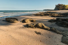 在新西兰海岸的沙滩 免版税库存图片