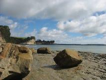 在新西兰海滩的下落的岩石 免版税库存照片