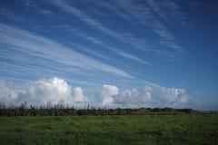 在新西兰的天空蔚蓝 库存照片