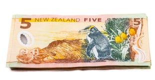 在新西兰货币的笔记 库存照片