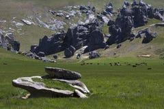 在新西兰` s南岛的城堡小山 库存图片
