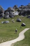 在新西兰` s南岛的城堡小山 免版税库存图片