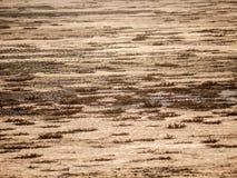 在新锡德尔湖,奥地利的盐平底锅 免版税图库摄影