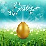 在新鲜的春天草的金鸡蛋复活节天贺卡的 库存照片