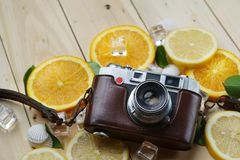 在新鲜的橙色柠檬海壳叶子立方体之间的葡萄酒照相机 免版税库存图片