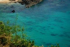 在新鲜的清楚的热带水的竹风景 珊瑚礁和 库存图片