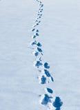 绞在新鲜的白色雪的脚印 免版税库存照片