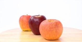 在新鲜的苹果前面的凋枯的苹果。 免版税库存图片