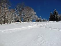 在新鲜的雪的滑雪轨道 库存图片